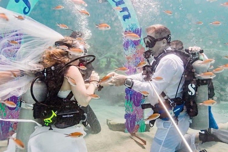 Keren! 10 Foto Pernikahan di Bawah Laut Ini Bikin Berdecak Kagum