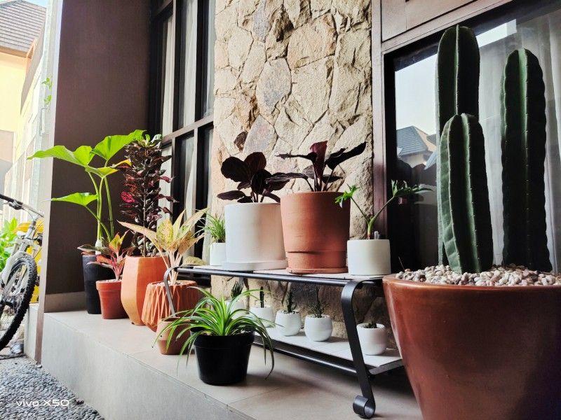 Mempercantik Halaman, Ini 9 Inspirasi Taman Minimalis Depan Rumah