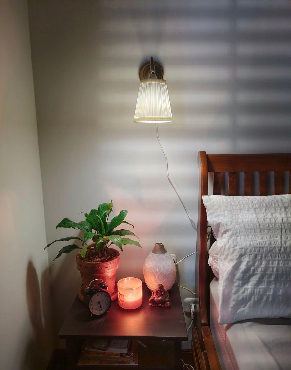 Percantik Sudut, Ini 8 Rekomendasi Peletakan Tanaman Hias di Rumah