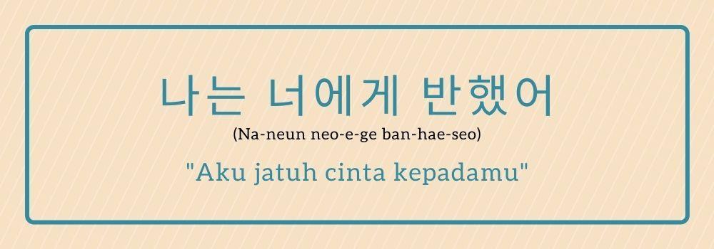 11 Ucapan Aku Cinta Kamu Dalam Bahasa Korea So Sweet