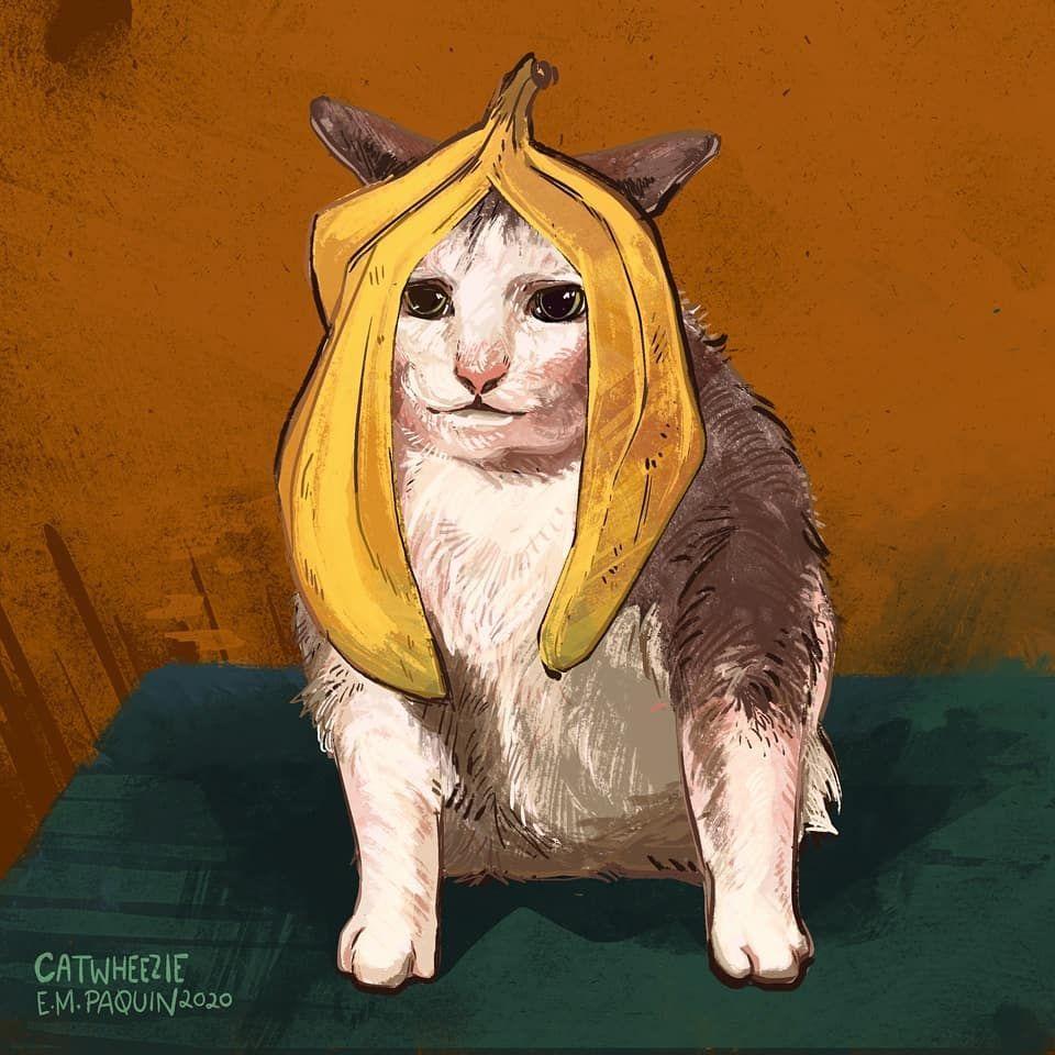 100 Days Challenge Drawing Meme Kucing yang Bikin Gemas