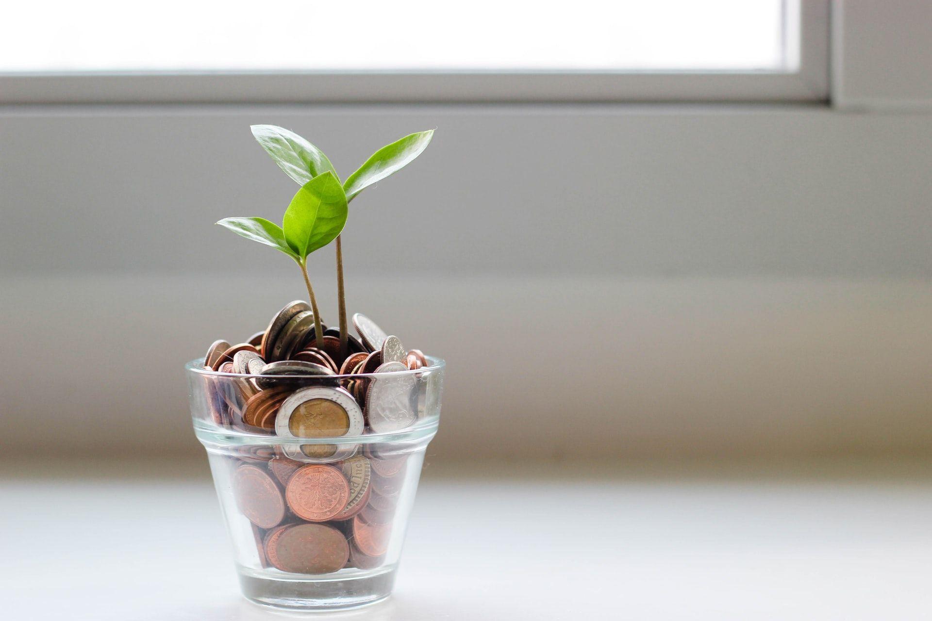 Tips Mengelola Keuangan agar Masa Depan Keluarga Terjamin