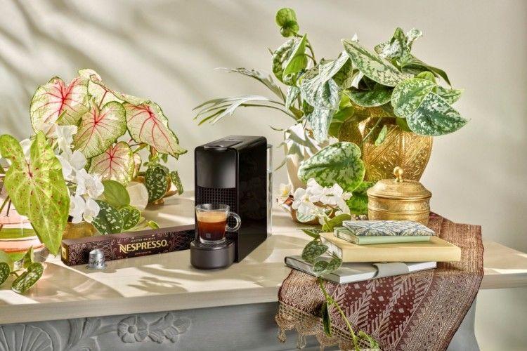 Ini Lho, Proses Pembuatan Kopi Premium Master Origins Aged Sumatra