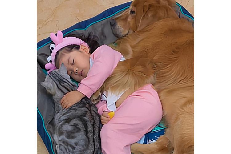 5 Tingkah Menggemaskan Anak Kecil Merawat Peliharaannya
