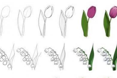 Anti Gagal, Ini 3 Cara Mudah Membuat Sketsa Bunga Indah