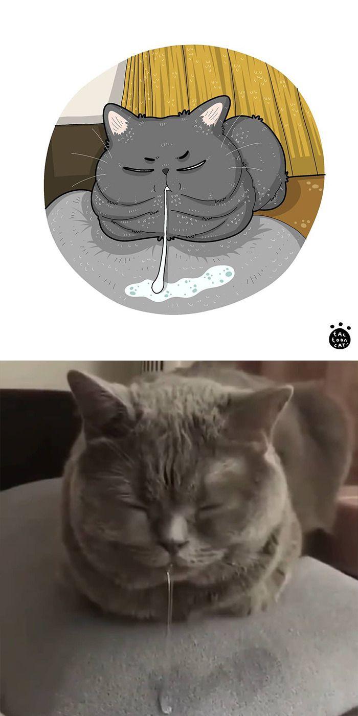 Bikin Ngakak Banget, 13 Ilustrasi Tingkah Kucing Ini Super Menghibur!