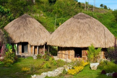 Sederhana Sarat Fungsi, Ini 7 Jenis Rumah Adat Papua