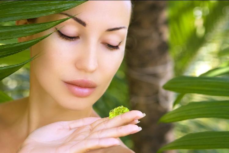 Ini 3 Manfaat Aloe Vera untuk Kecantikan