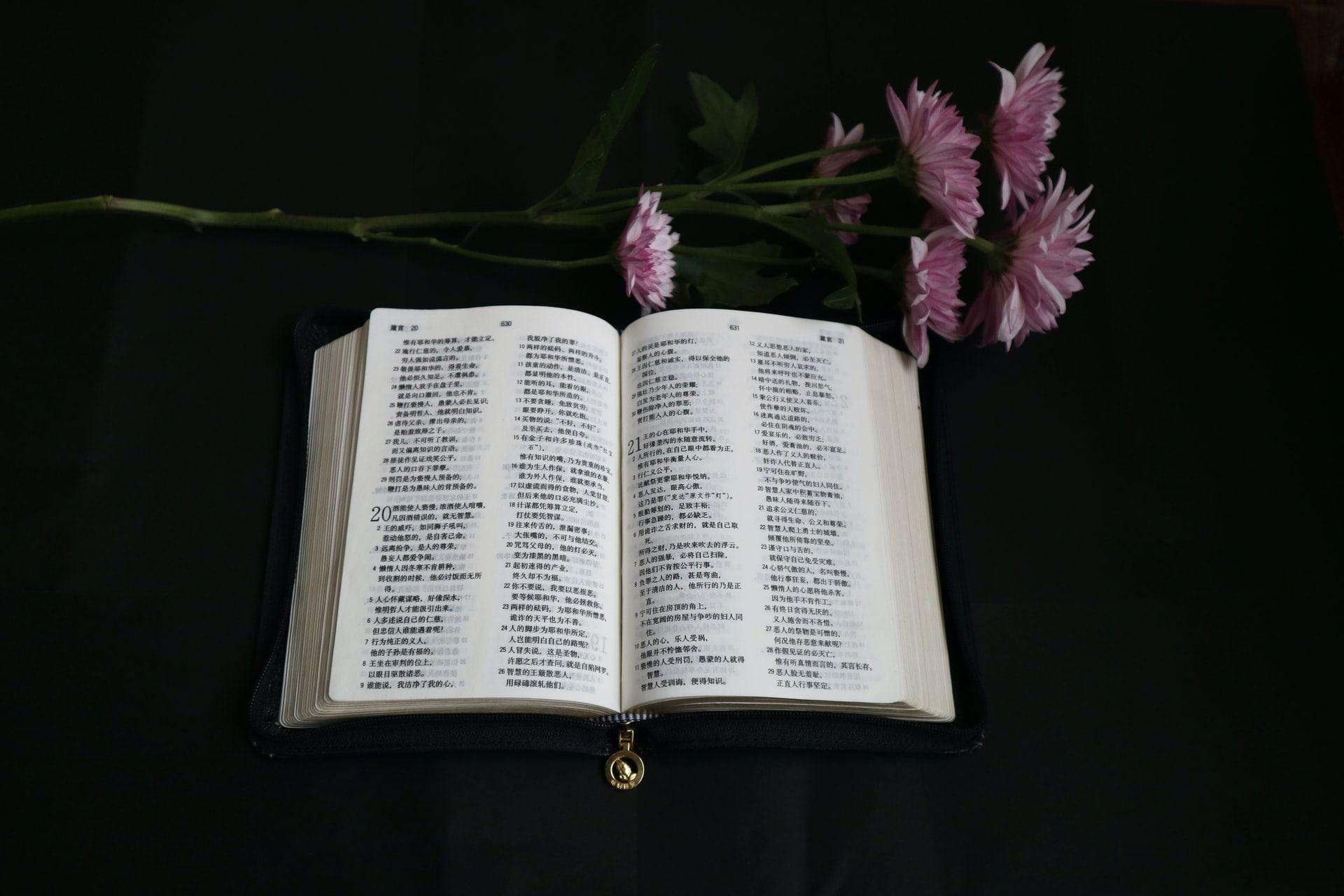 Ungkapan Syukur, Ini 25 Ayat Alkitab Tentang Ulang Tahun