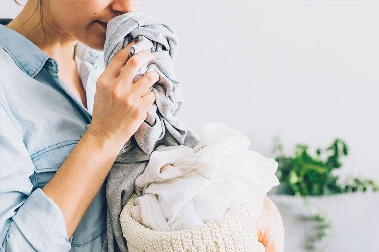Cara Menghilangkan Bau Apek Pada Baju