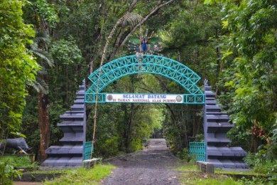 5 Kisah Mistis Alas Purwo, Hutan Tertua Pulau Jawa