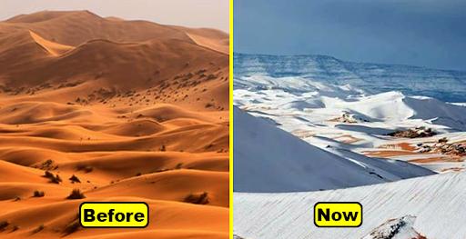 Gurun Sahara Bersalju! Fenomena Perubahan Iklim yang Langka