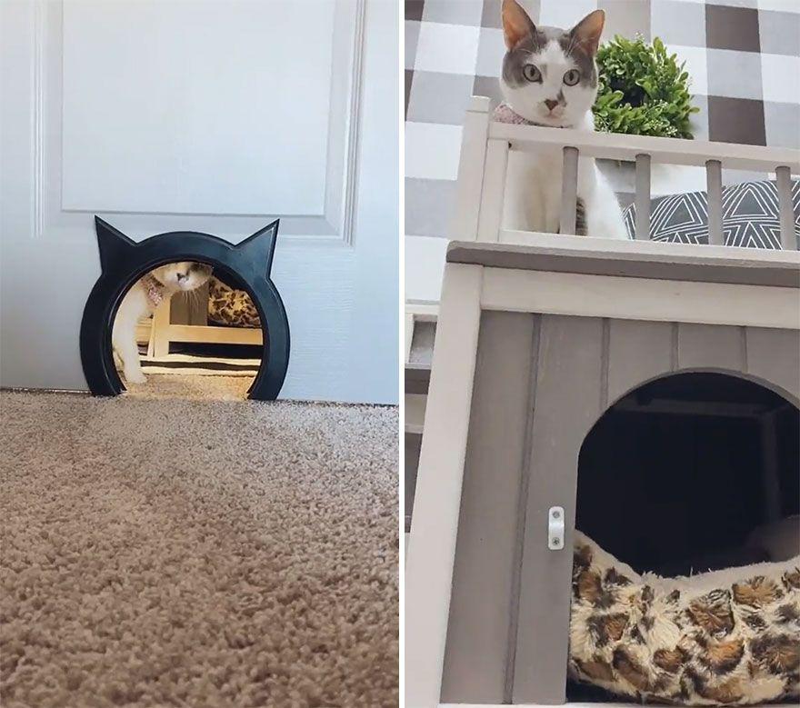 Hidup Mewah, Rumah Kucing Ini Akan Bikin Kamu Iri