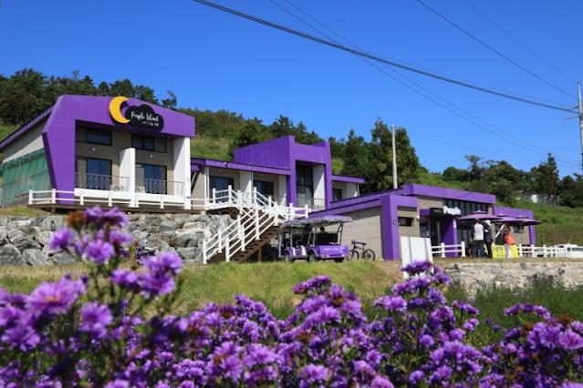 Selain Pulau Ungu di Korea, Ada 5 Destinasi Wisata Berciri Khas Warna