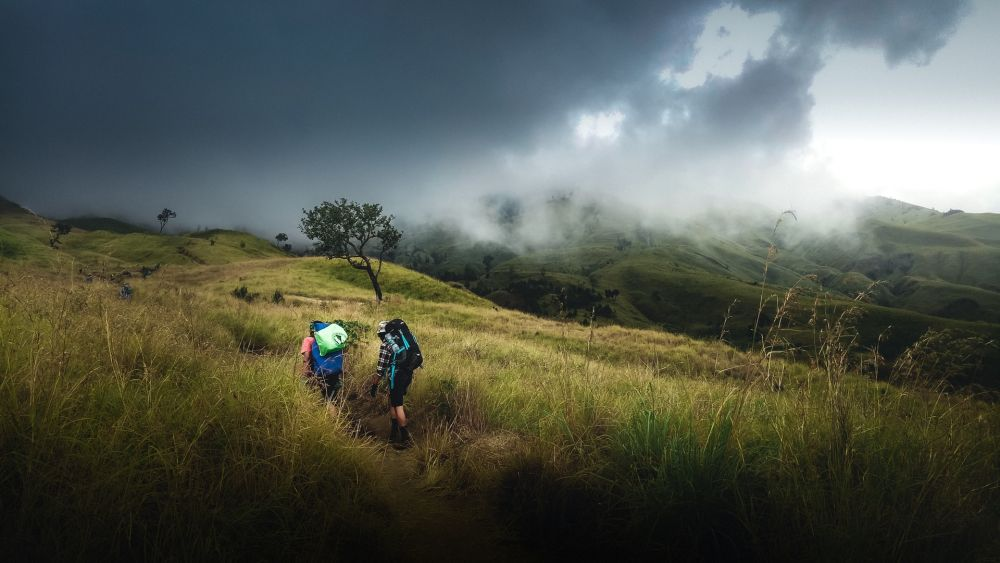 Info Wisata Buffalo Hill, Garut: Rute, Biaya, Pendakian, dan Tips