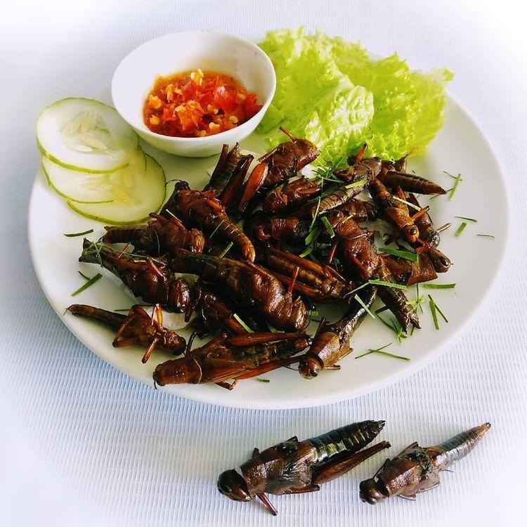 Inilah 5 Makanan Ekstrem di Indonesia, Berani Mencoba?