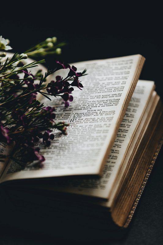Ayat Alkitab Tentang Kematian & Penghiburan Bagi yang Ditinggalkan