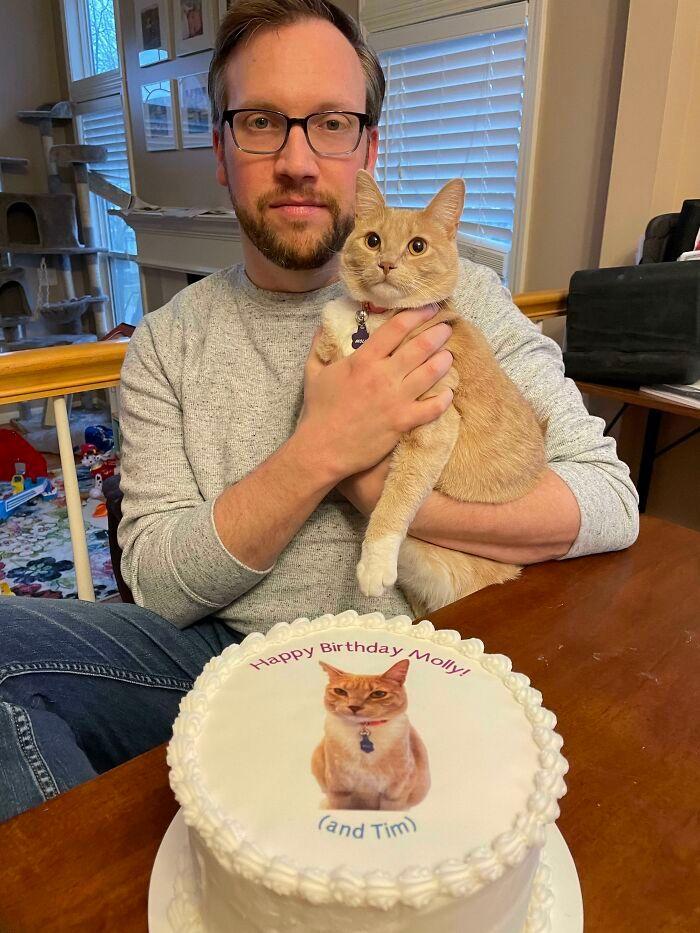 Bikin Ngakak, 12 Foto Ini Buktikan Kalau Kucing Bisa Menguasai Manusia