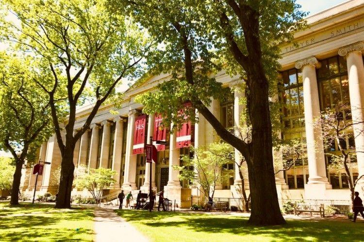 Ada yang dari Harvard & MIT, Ini 9 Situs Online Learning Terpopuler!