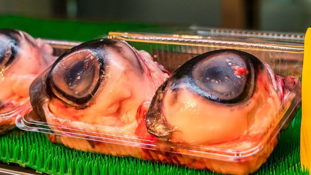 Ada Penis Ikan dan Testis Banteng, Intip 15 Hidangan Teraneh di Dunia